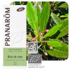 Huile essentielle bois de rose bio - Pranarôm