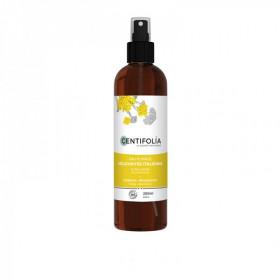 Centifolia - Eau Florale Hélichryse italienne BIO - 200 ml Atténue les rougeurs, la couperose et les vaisseaux dilatés