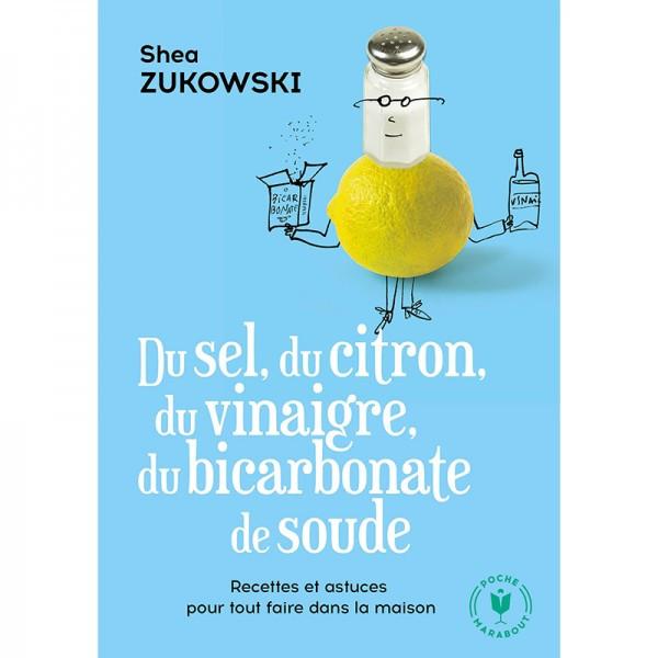 Du sel, du citron, du vinaigre, du bicarbonate de soude - Recettes naturelles pour la maison