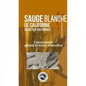 Sauge Blanche de Californie - 2 rameaux